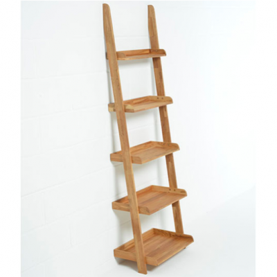 Lean-O Ladder Shelves