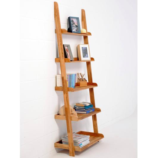 Lean O Ladder Shelves